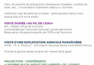 Visites guidées des fouilles rue Léon Arnoux dans le cadre des journées du Patrimoine de Pays et des Moulins