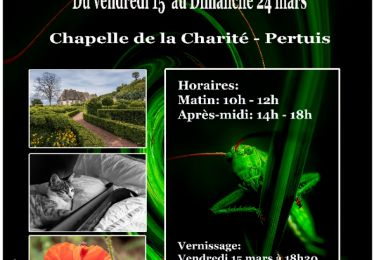 Exposition du photo club Image...in
